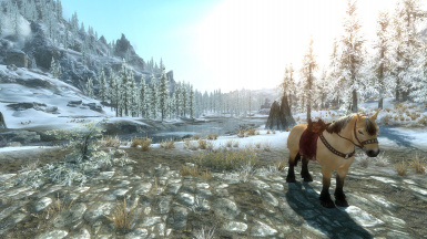 immersive horses and elfx weathers