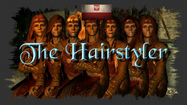 The Hairstyler - Polish Translation