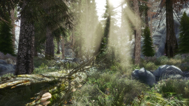 Fantasy Forest Overhaul