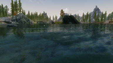 ClearWater for ENB and RWT
