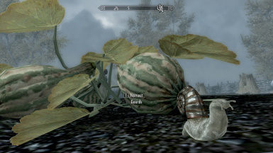 Snails (stand alone from Beasts of Tamriel) BDGray02