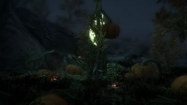 The Witches Festival (A Halloween Mod)