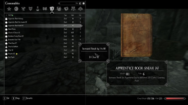 Enderal - Learning Book Corner Message