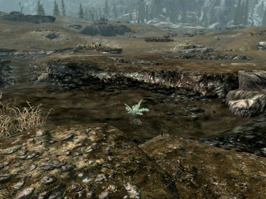 Less Radioactive Nirnroots