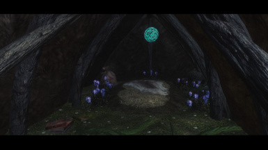 Morgenstern's Eldergleam Sanctuary Druid Camp