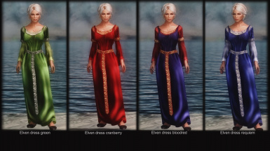 Apachii Divine Elegance Store at Skyrim Nexus - mods and