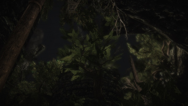 1 before enb