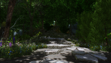 Path to the forest