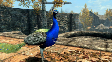 Peacocks- Mihail Monsters and Animals (mihail immersive add-ons- animals- birds)