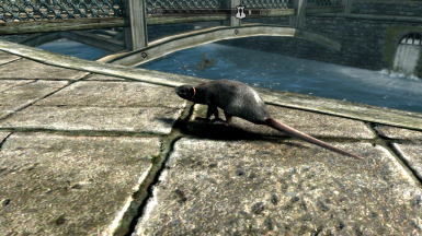 Sewer Rats - Mihail Monsters and Animals (mihail immersive add-ons- animals)