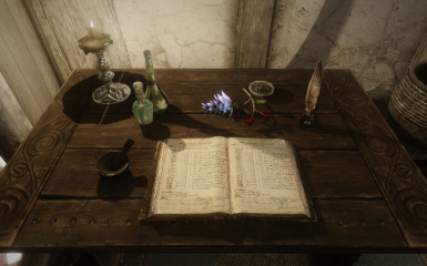 Alchemist's journal - Chinese version