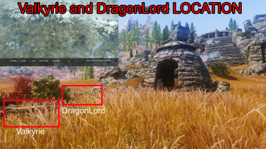 Valkyrieand DragonLord Location