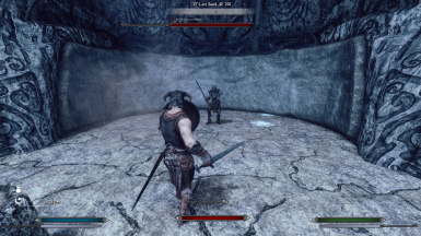 5.2 Dragonborn Preset with Meter bars Preview