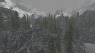 Forests of Skyrim