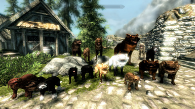Dogs of Skyrim FR