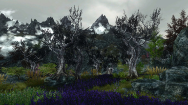 The Reach - WinterGreen ENB