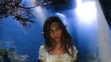 Ferwen - standalone follower and preset