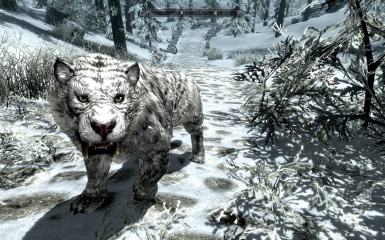 Jango PET-MOUNT Sabrecat 2_5 Fixed
