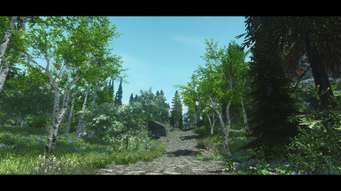 Spring Forest Overhaul