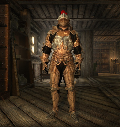 Knight armor for Enderal