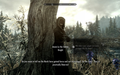 Anum-La the Swamp Knight - South of Folgunthur and sometimes Morthal