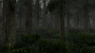 Climates of Tamriel - Overcast