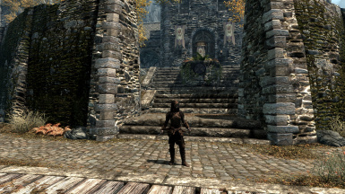 Bosmer Armor Pack High Res (Weapon DSR Patch)