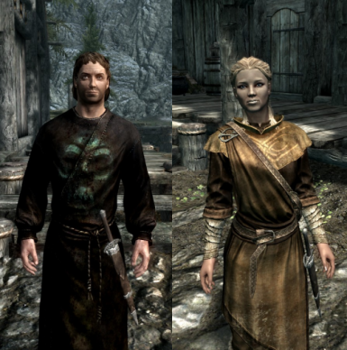 Breton twin mage followers