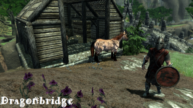 Dragonbridge2