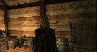 Aeria - A Thalmor guard for your house