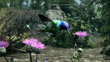 Hummingbirds- Mihail Monsters and Animals (mihail immersive add-ons - animals)