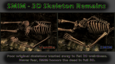 Skeleton Remains Comparison