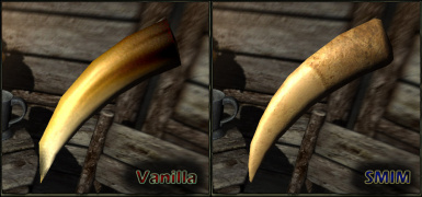 Sabrecat Tooth Comparison