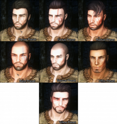 Male Face Presets