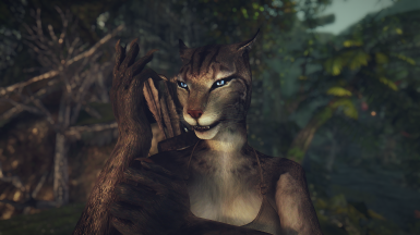 Khajiit Overhaul At Skyrim Nexus Mods And Community