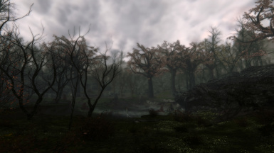Dark Forests of Skyrim