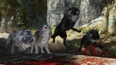 Wolves of Cyrodiil - Mihail Monsters and Animals (mihail immersive add-ons - wolf)