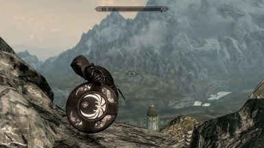 Shield normal size 1