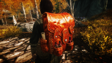 Alchemist Backpack French