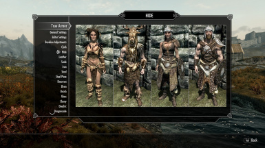 Reference images for each armor category are now included for convenience