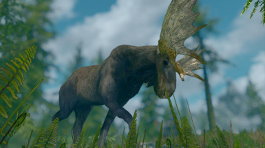 Moose -Elements of Skyrim (mihail immersive add-ons- megafauna- animals)