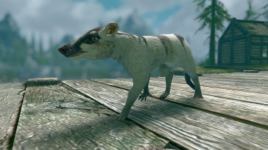 Civets and Mongooses -Elements of Skyrim pt.11 (mihail immersive add-ons- animals)