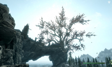 Big Tree in Solitude (It can be seen from far away)
