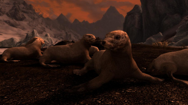 Seals and Sea Lions- Mihail Monsters and Animals (mihail immersive add-ons)