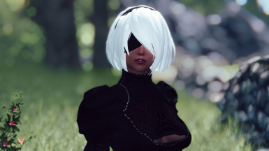 GK YoRHa Followers - from NieR Automata - at Skyrim Nexus - mods and