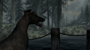 Exploring Skyrim's Wilderness