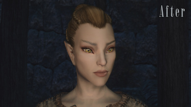 Altmer - After (With modded normals)