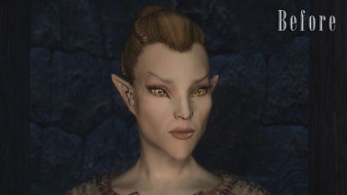 Altmer - Before (With Vanilla Normals)