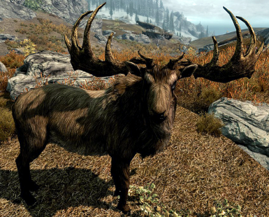 Unofficial Mod of the Moose