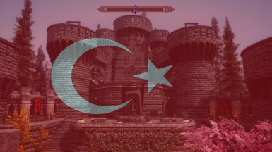 Shadowstar Castle-Turkish Translation